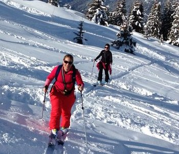 UP FOR SKI-TOURING?